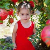 Малышка  Линой :: Malka Morgan