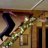 Свадебная суматоха :: Валерий Славников