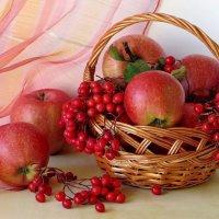 Тёплые краски осени :: Татьяна Смоляниченко