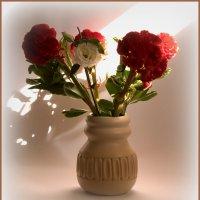 Цветы и луч солнца :: Alla