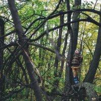 темный лес2 :: Анна Вязьмина-Кирилюк