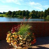 Очарование ранней осени :: Nina Yudicheva