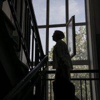 Вверх по лестнице... :: Людмила Синицына