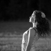 Осеннее солнце :: Elena
