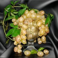 Виноград :: °•●Елена●•° Аникина♀