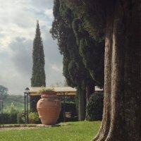 Где-то в Тоскане :: Сергей Лошкарёв