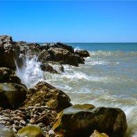 Море :: cfysx