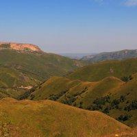 Альпийские луга Малого Карачая. Высота около 2000 м. :: Vladimir 070549