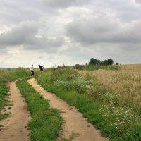 По проселочной дороге :: Валерий Талашов