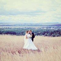 Свадебная фотосессия в поле :: марина алексеева