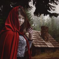 Красная шапочка :: Артур Новоселов