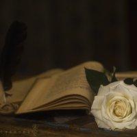 Поэтично :: Вера Арасланова