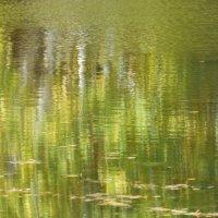 лесное озеро осенью :: Анна