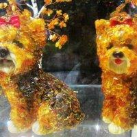 Собачки из янтаря :: татьяна
