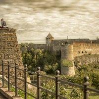 крепость :: oleg Golubtcov