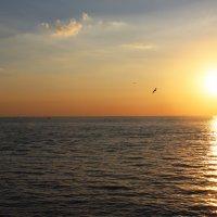море засыпает :: сергей Бойцов