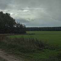Приближение грозы. :: Яков Реймер