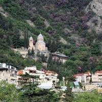 Тбилиси. Вид на гору Мтацлинда :: Лидия кутузова
