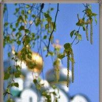 Воспоминание о весне :: Лидия (naum.lidiya)