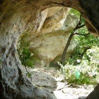 """Вид из """"Пещеры желаний"""" :: Надежда"""