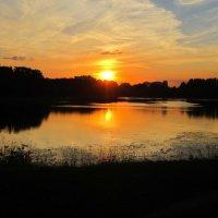В закатном блеске пламенеет снова лето :: Дмитрий Никитин
