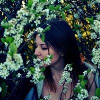 В цвету... :: Татьяна