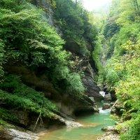 Гуамское ущелье :: Надежда