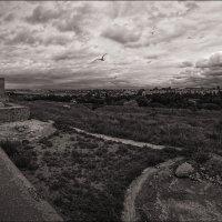 На окраине Херсонеса :: Олег Фролов