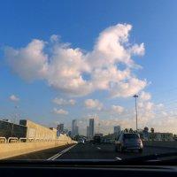 Дорога на Тель-Авив. :: Пётр Беркун