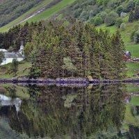 Норвежские виды :: Olga F