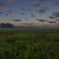 На рассвете в клязьминской пойме. :: Igor Andreev