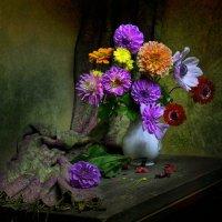 Жеманной прелестью цветов... :: Валентина Колова