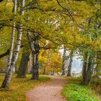 Осень в старом парке 4 :: Виталий