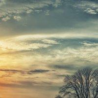 Небо :: Виктория Велес