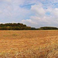 Осени панорама :: Alexander