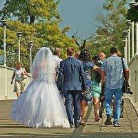 молодожены на Тещином мосту :: Александр Корчемный