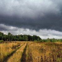 Не перечислить осени дождей... :: Лесо-Вед (Баранов)