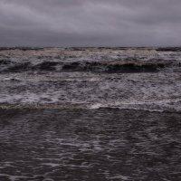 Белое море - шторм. :: Елена Третьякова