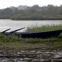 Дождливый сентябрь :: Владимир