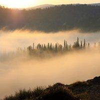 Островок в тумане :: Сергей Чиняев