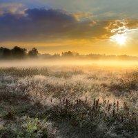 Рассветные волны...2. :: Андрей Войцехов