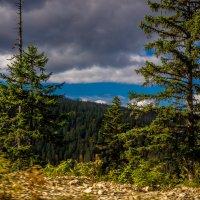 Осень в горах! :: Ирина Антоновна