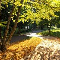 Осень :: Андрей Агешин