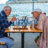Шахматисты :: Artem Zelenyuk