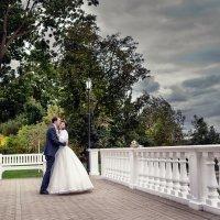 Свадебная прогулка, Владимир и Оксана :: Денис Соболев