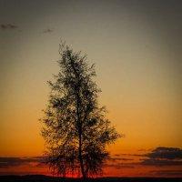 Одиночество на закате :: Катерина