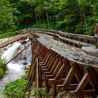 Сплав леса по горной реке. Австрия :: Сергей Хомич