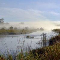 Утренний туман. :: Наталья