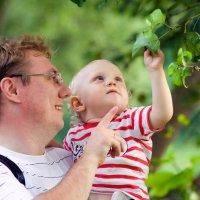 Когда деревья были большими :: Александр Горбунов