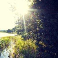 Копанское озеро... :: Ольга Мореходова